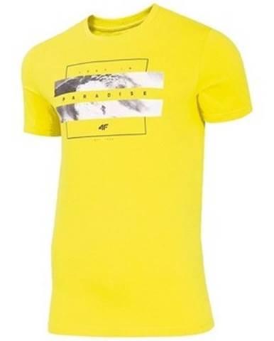 Tričká s krátkym rukávom  H4L20 TSM035A Żółty